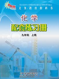 (六三)化学配套练习册(九年级上册)